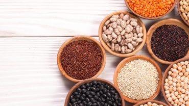 grãos e potes, fontes de proteína vegetal