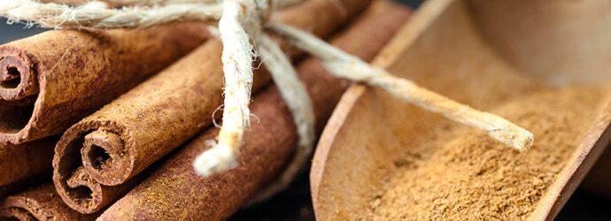 paus de canela e canela em pó em uma colher de madeira
