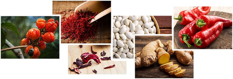 Gengibre, pimentas, guaraná, chá verde, açafrão e feijão branco são termogênicos naturais.