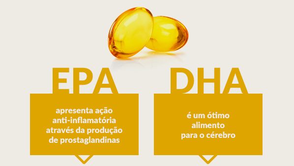 Resultado de imagem para benefícios do omega 3 dha